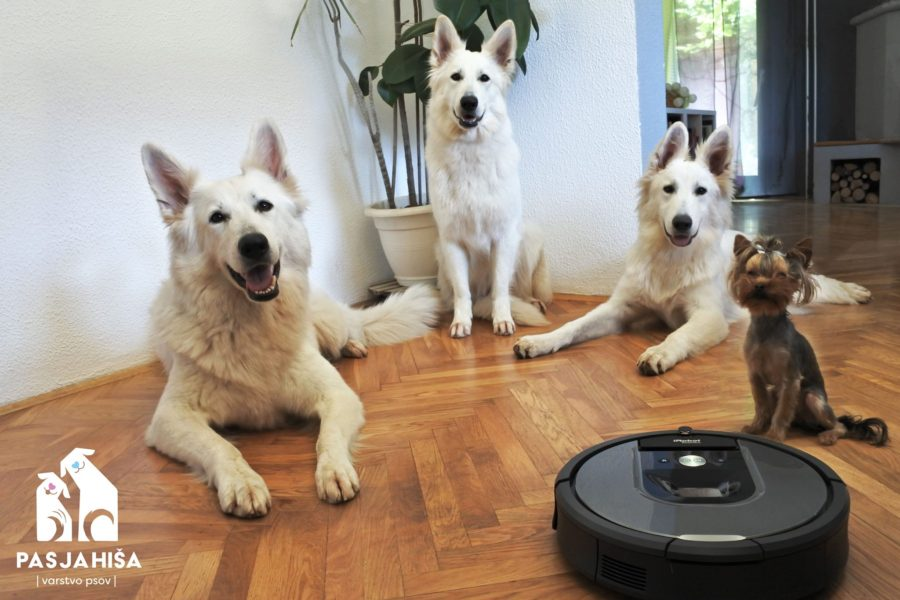 iRobot Roomba – our best friend.!