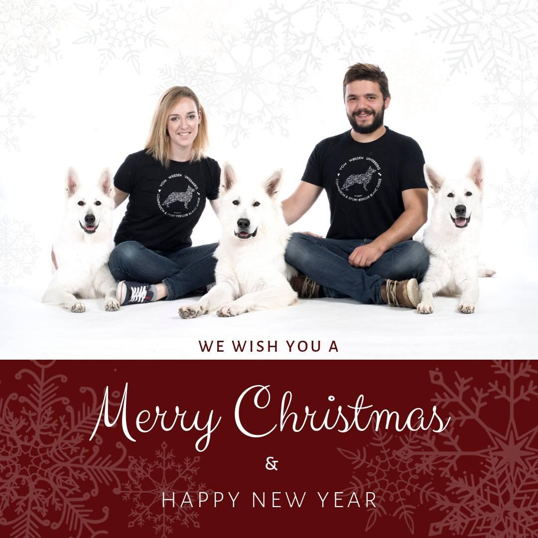 Vesele in mirne božične praznike ter vse najlepše v novem letu!